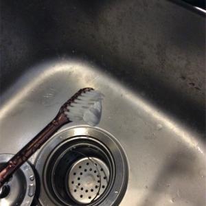 車中泊とギャレーの効能/車中泊 〜歯を磨き、皿を洗って衛生管理〜