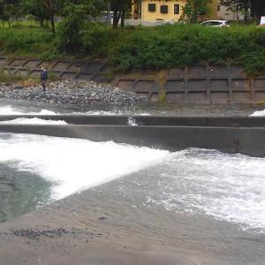 「甲子川でルアーを投げてみた」の巻