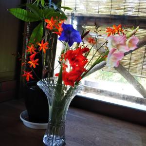 S田さんの田舎暮らし Vol.57 花の便りとともに