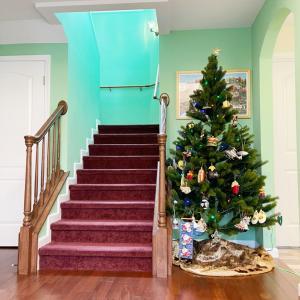 今年もクリスマスツリーの季節になりました。