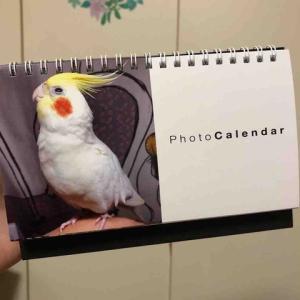 <応募企画> オカメカレンダー2022年版を作りた〜い