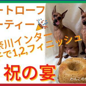 FCI神奈川インターナショナルドッグショー