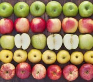 りんご天国