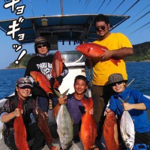 日本で一番シガテラ毒に当たってるかもしれない美味しい魚【犯人はこのサムネイル表紙の中】