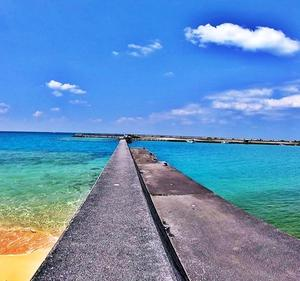 43㎏のアーラミーバイ(ヤイトハタ)が釣れた新里漁港【釣りポイント百景#5】