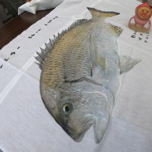 これは魚拓です 【Gyotaku】