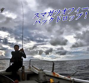 スマガツオ連発!!ナブラ大量発生【海輝丸さん後編】