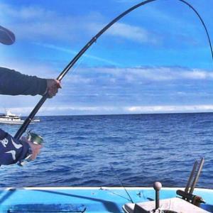 【するするスルルー釣りタックル】ダイワ剛徹VSパヤオの巨魚