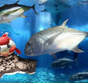 フカセ+泳がせ釣りでダイワのソルティガのをオモチャみたいに出すヤツを磯で掛けてしまった