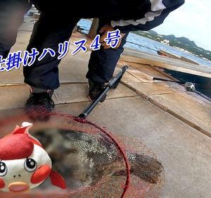 数々の釣り人の糸を切ってきたイカダのヌシVSサビキ仕掛けのグルクン竿