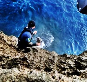 サメ回しの術、サメ回しの達人あらわる!?【与那国釣り遠征#6 番外編】