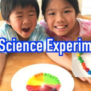 今こそ、子供と一緒に理科の実験! M&Mで簡単な理科の実験