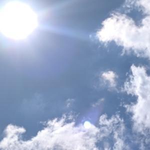 太陽の光は元気が出るねー!
