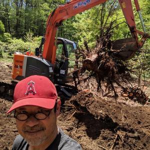 森の家、10日早く抜根終わる。