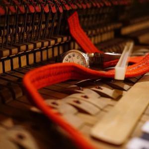 森ピアノ final。