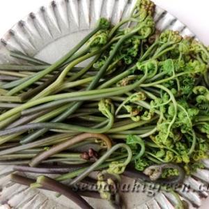 蕨(わらび)のあくぬき方法。山菜おこわを炊きました