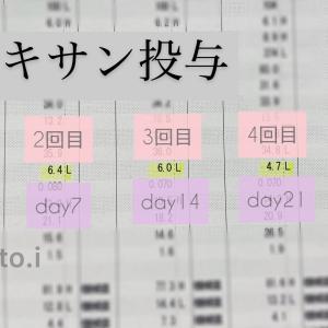 リツキサン治療後、血小板推移(Day1~Day33)