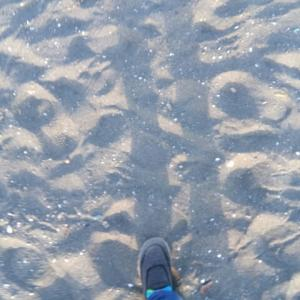 春の浜辺で  in サザンビーチ