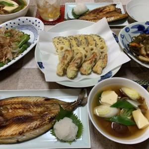 天ぷら3種と焼き魚で和食ご飯