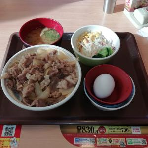 すき家 牛丼大盛りランチセット♪