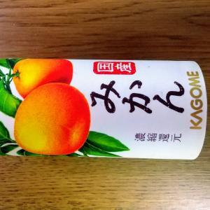 お中元 カゴメ 国産フルーツジュース詰め合わせ♪