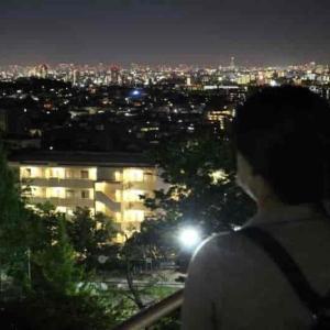 朝日ヶ丘北公園【アクセス・駐車場】芦屋市中心のリアルな夜景