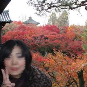 東福寺【アクセス・駐車場・御朱印】京都随一の紅葉は神火の如く