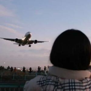 千里川河川敷(土手)~大迫力の飛行機の離着陸【アクセス・駐車場】