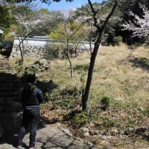 おうむ岩【アクセス・駐車場】不思議な現象が起きる珍スポット