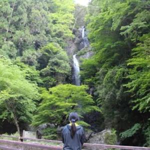 宮の滝 五條市【アクセス・駐車場】落差40mの名瀑