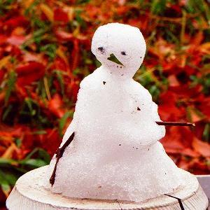 冬は「太りやすく」「血液もドロドロしやすく」なるので気を付けよう~!!ZUMBAで楽しく健康に!