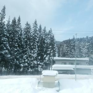 【2月予告】オンラインZUMBA昼クラス復活!!