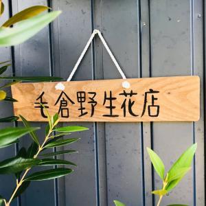 毛倉野生花店