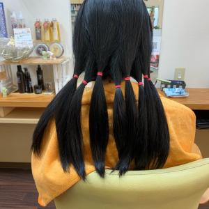 *髪の毛の量が多い人のヘアドネーション*