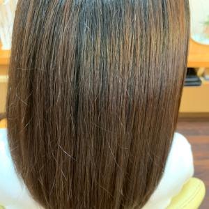 *体も髪の毛も定期検診が大切です!*