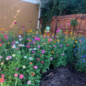 花ガーデン