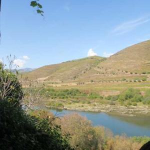 6度目のポルトガル(26)ドウロ川に沿った小さなキンタ(荘園)が今日のお宿です!