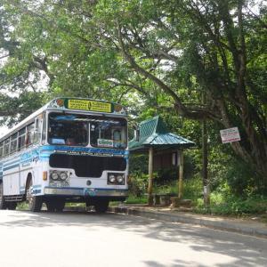 【シーギリヤ】スリランカ5日目➁~5時間かけてコロンボに戻ります!笑~