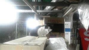 屋根下の住猫、ポニー