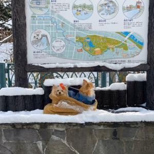 冬の中島公園と体重記録