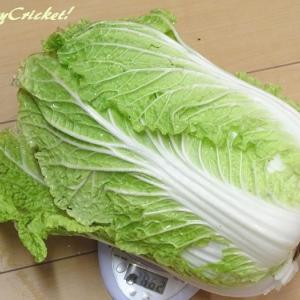 白菜も残り少なくなってきましたwithお手軽簡単中華旨煮♪(o≧∇≦)o♪