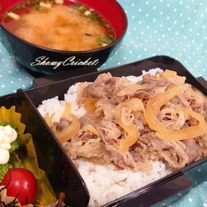 僕のライバルはコンビニ弁当!with牛丼弁当(@^▽^@) わーい