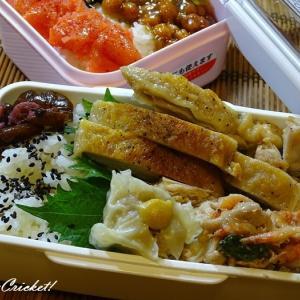 キュウリの朝漬けが美味い!withチキンソテー弁当v(。・・。)vイエイ♪