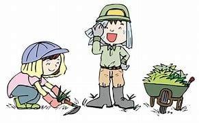 草刈り作業と夕暮れ で、買い物行ったら財布忘れた事件( ゚Д゚)