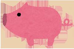 1万円でお肉が5kg 宮崎県日南市 ふるさと納税