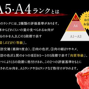 A4~A5ランク黒毛和牛 切り落とし 1.1kg 熊本県八代市ふるさと納税