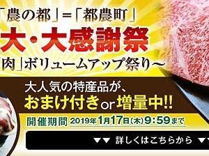 肉ボリュームアップ祭り 期間延長 宮崎県都農町ふるさと納税