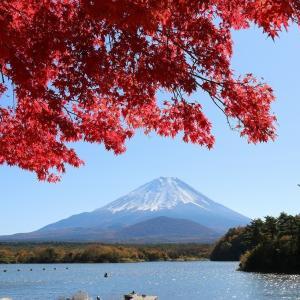 富士山(12/5 m)