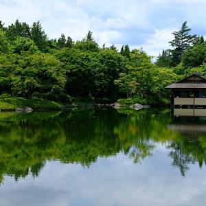 昭和記念公園にて(6/25 e)