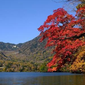 奥日光湯ノ湖(10/29 m)